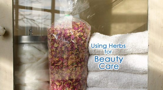 How to Use Herbs in Beauty Care