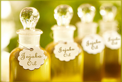 All About Jojoba Oil
