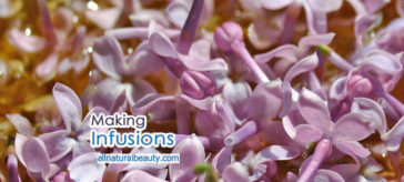 Infusing Herbs and Flowers in Oil