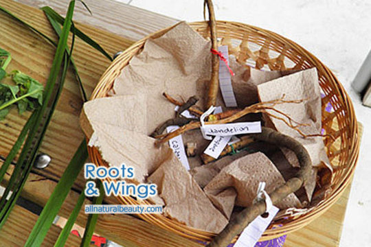 Roots and Wings Event