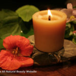 Fill Your Home with Living Light…Greener Candles Light the Way to a Brighter, Cleaner Future by Jaqueline Ramsey