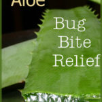 Natural Help for Bug Bites