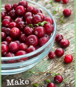 Cranberry Toner Recipe from Li Wong