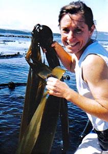 BC Kelp