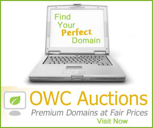 Visit OWC Auctions for Premium Domains at Fair Prices