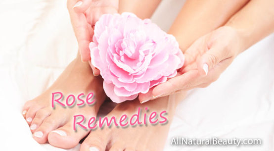 Rose benefits - Useful for wellness