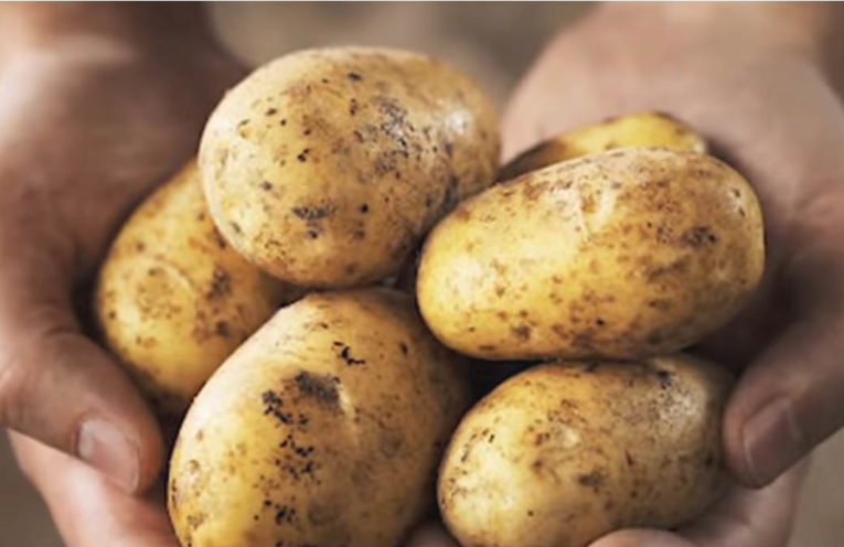 How to Grow Your Own Potatoes