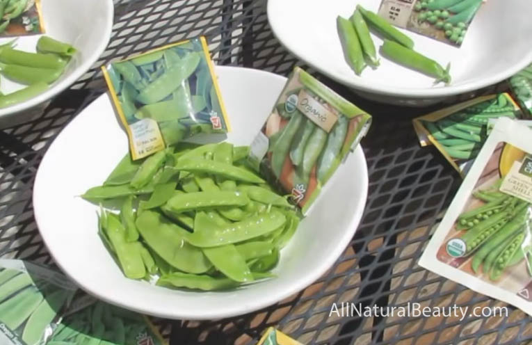 How to Grow Organic Peas